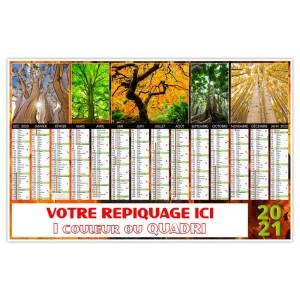 BANCAIRE ECORCE 2021 - MAXI RIGIDE